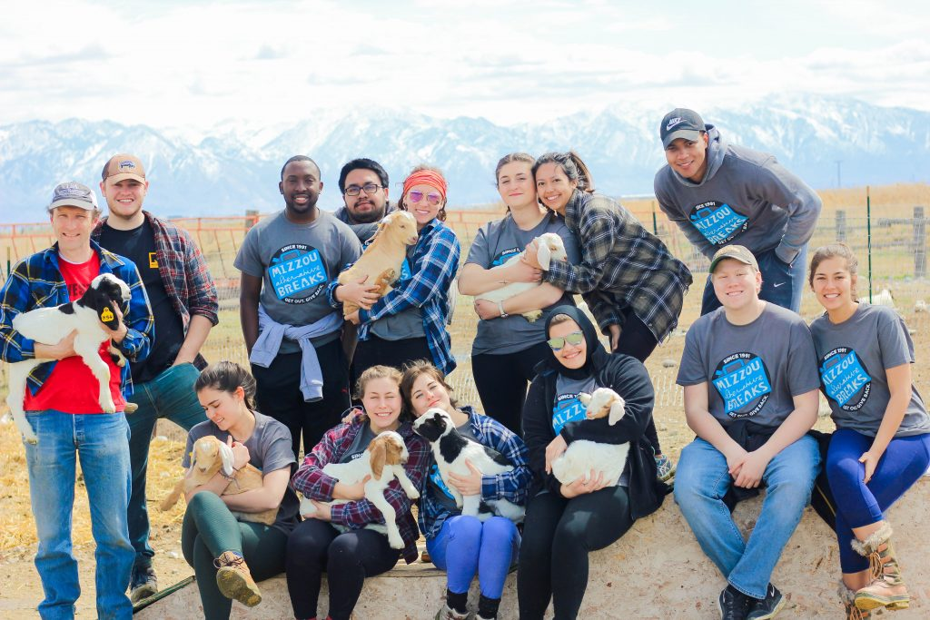 A refugee and immigration advocacy focused trip serving with the International Rescue Committee in Salt Lake City, Utah in March of 2018.